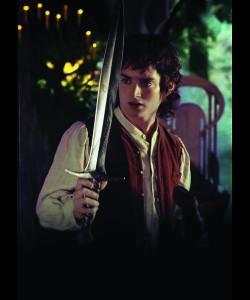 Filmszene Der Herr der Ringe - Die Gefährten - Frodo mit Stich